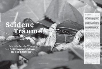 Artikel als PDF - Nationale Informationsstelle für Kulturgüter ...