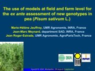 The use of models at field and farm level for the ex ante assessment ...