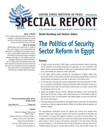 The Politics of Security Sector Reform in Egypt - United States ...