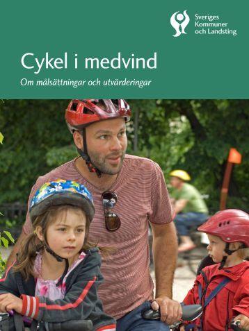 Cykel i medvind - spolander consulting