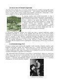 Untitled - Budapesti Egyetemi Katolikus Gimnázium és Kollégium - Page 5