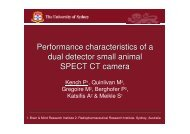 Performance characteristics of a dual detector small animal ... - ainse