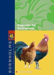 folder med tekst rettet 12.07.2011.indd - Bornholms Regionskommune