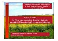 La filiera agro-energetica da colture dedicate: un modello ... - Energia