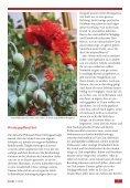 MIT meinen Wurzeln LEBEN - Franz Sales Verlag - Seite 7