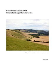 North Wessex Downs AONB Historic Landscape Characterisation