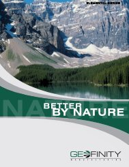 Geofinity Brochure - Emerson Swan