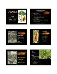 Papaya - Aggie Horticulture - Texas A&M University