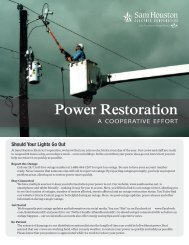 Power Restoration: A Cooperative Effort - Sam Houston Electric