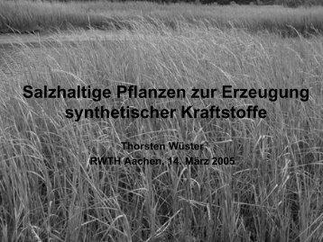 Thorsten Wüster - Lehrstuhl für Brennstoffzellen der RWTH Aachen