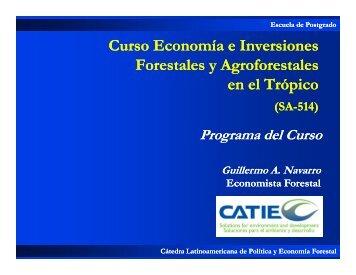 Programa del Curso 2009.pdf - Catie