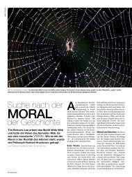 Moral des WWW - Interview mit Herbert Hrachovec (PDF, 404 KB)