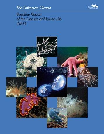 Ocean Baseline Report.pdf - CoML