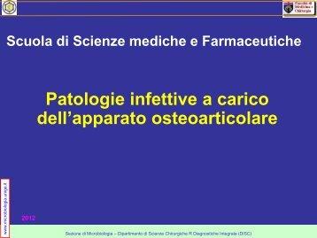 streptococchi - Sezione di Microbiologia