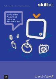 Survey of the Audio Visual Industries' Workforce 2005 - Skillset