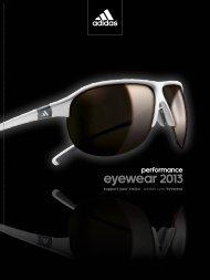 eyewear 2013