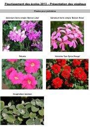 Fleurissement des écoles 2013 – Présentation des végétaux