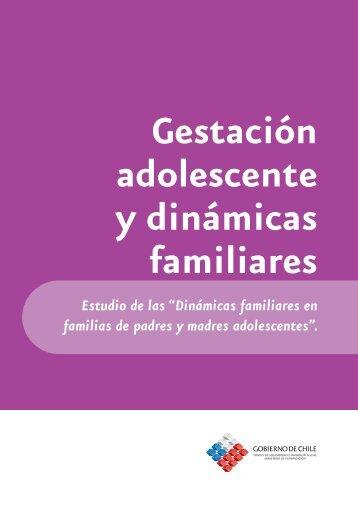 """""""Dinámicas familiares en familias de padres y ... - Engagingmen.net"""