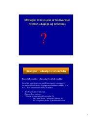 Strategier – udvælgelse af områder - Københavns Universitet