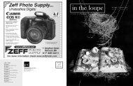 November | December 2003 - Boston Photography Focus