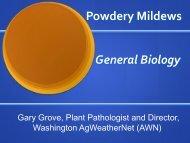 Powdery Mildews - Utahhort.org