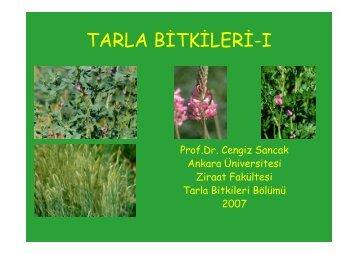 tarla bitkileri-ı - Ziraat Fakültesi - Ankara Üniversitesi