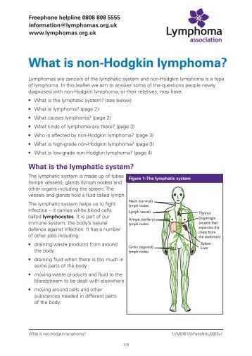 signs and symptoms of lymphoma - lymphoma association, Skeleton