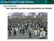 11.5 Speciation Through Isolation