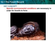 12.1 The Fossil Record