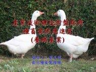 PowerPoint 簡報 - 台灣畜產種原資訊網