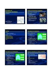 Principles of Mechanical Ventilation