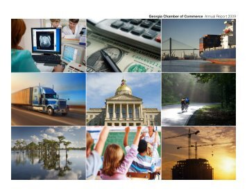 Georgia Chamber of Commerce Annual Report 2009