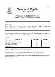 Autorizzazione alla presentazione della domanda di Distretto ...