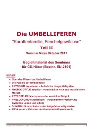 Auszug aus dem Seminarskript - Verlag Homöopathie + Symbol