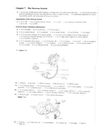 biology definitions completed worksheet The abnormal biology of a baby joseph was an unhappy baby he didn't sleep for long periods and appeared to cry all a time he'd best if.