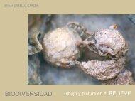 Relieves - José Luis González Recio