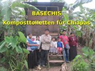 BASECHIS-Infobroschüre - WordPress.com