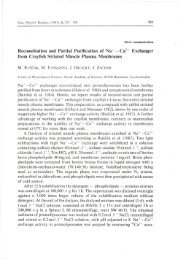 Reconstitution and Partial Purification of Na—Ca2 + ... - Gpb.sav.sk