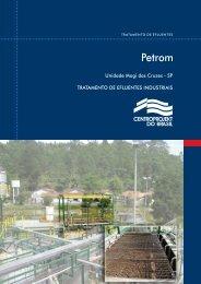 Petrom - centroprojekt brasil