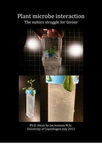Plant microbe interaction