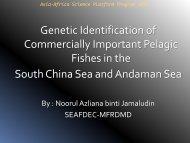 Genetic Identification of Commercially Important Pelagic ... - Seafdec
