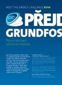 Grundfos Blueflux® - Page 4