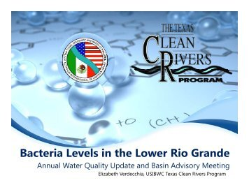 Bacteria Levels in the Lower Rio Grande