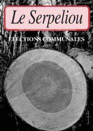 No 214 - Janvier 2011 [PDF, 4.00 MB] - Commune de St-Sulpice