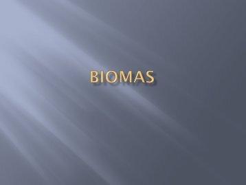 8. Biomas y Las Zonas Ecuatoriales.pptx