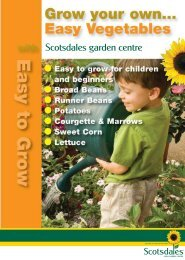 Download the Planting and growing guide - Easy to Grow Vegetables