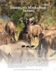 Serengeti Migration Safari - African Wildlife Foundation