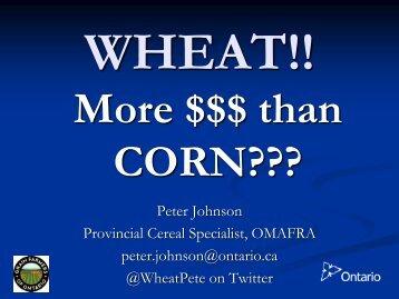 Wheat: Breaking Yield Barriers