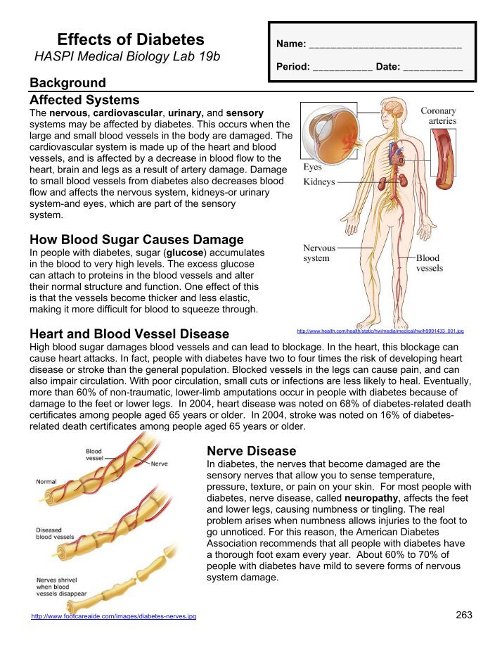 cardiovascular system bio lab Lab 10 physiology of the circulatory systemintroduction: the human circulatory system is a collection of structures thorough which oxygen and nut.