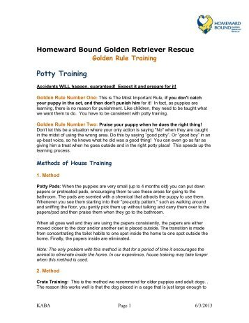 Puppy Potty Training - Homeward Bound Golden Retriever Rescue